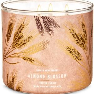 Bath & Body Works Accents - ALMOND BLOSSOM 3 Wick Candle